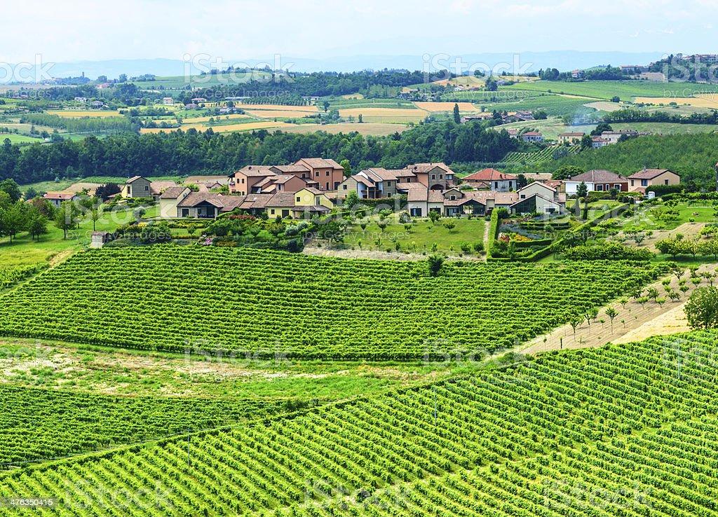 Monferrato (Italy) royalty-free stock photo
