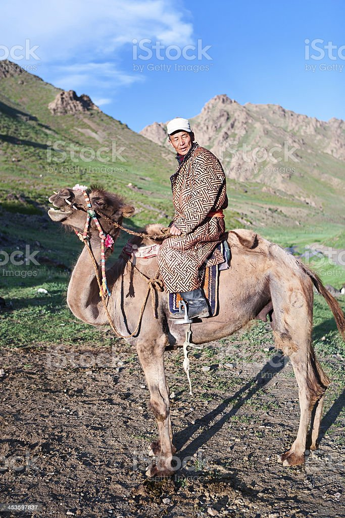 Mongolian camel rider royalty-free stock photo