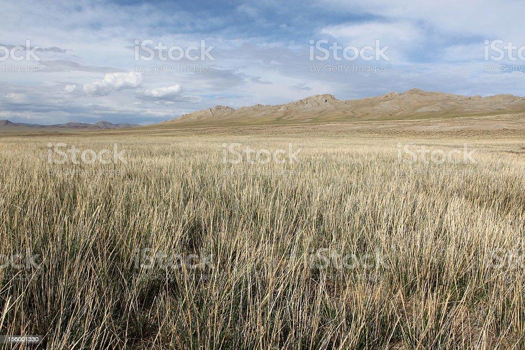モンゴルの草原 ロイヤリティフリーストックフォト