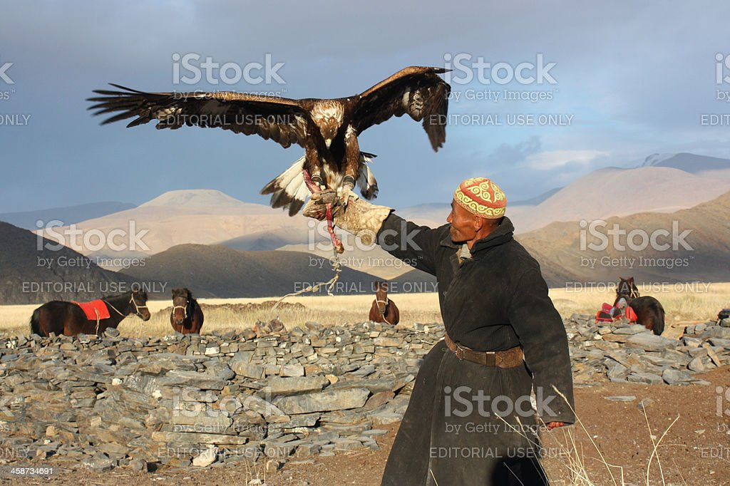 Mongolian man with golden eagle stock photo