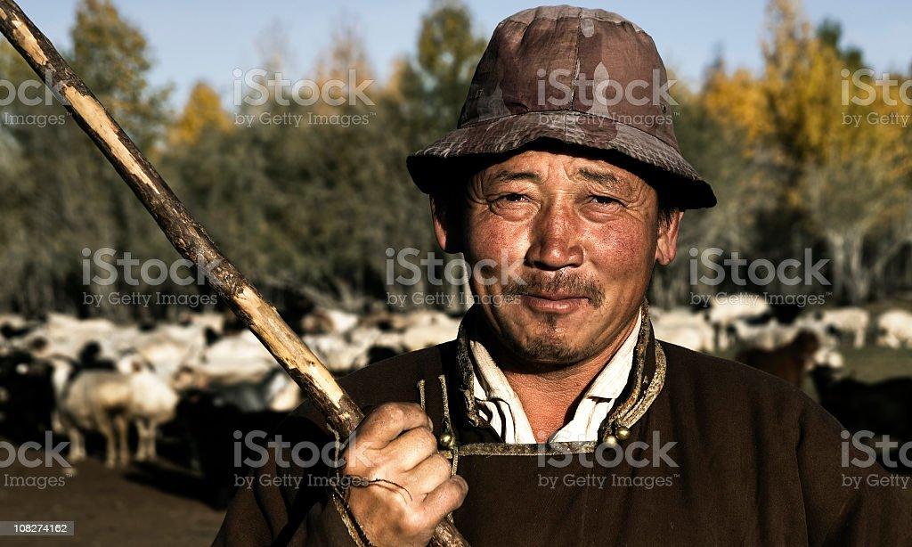 Mongolian Shepherd stock photo