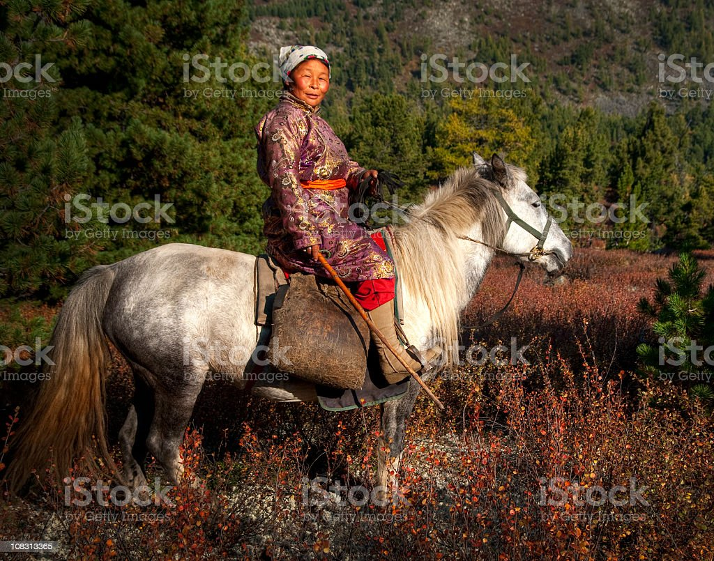 Mongolian Tsaatan Lady with her horse stock photo