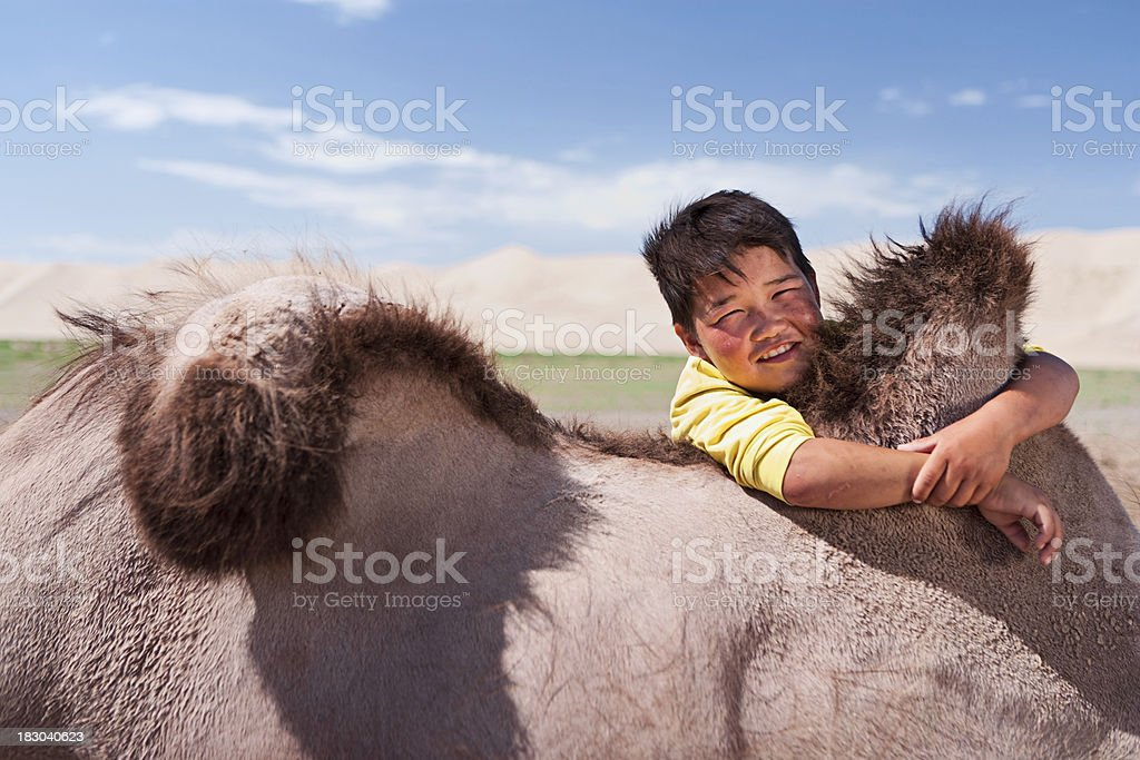 Mongolian young boy with camel stock photo