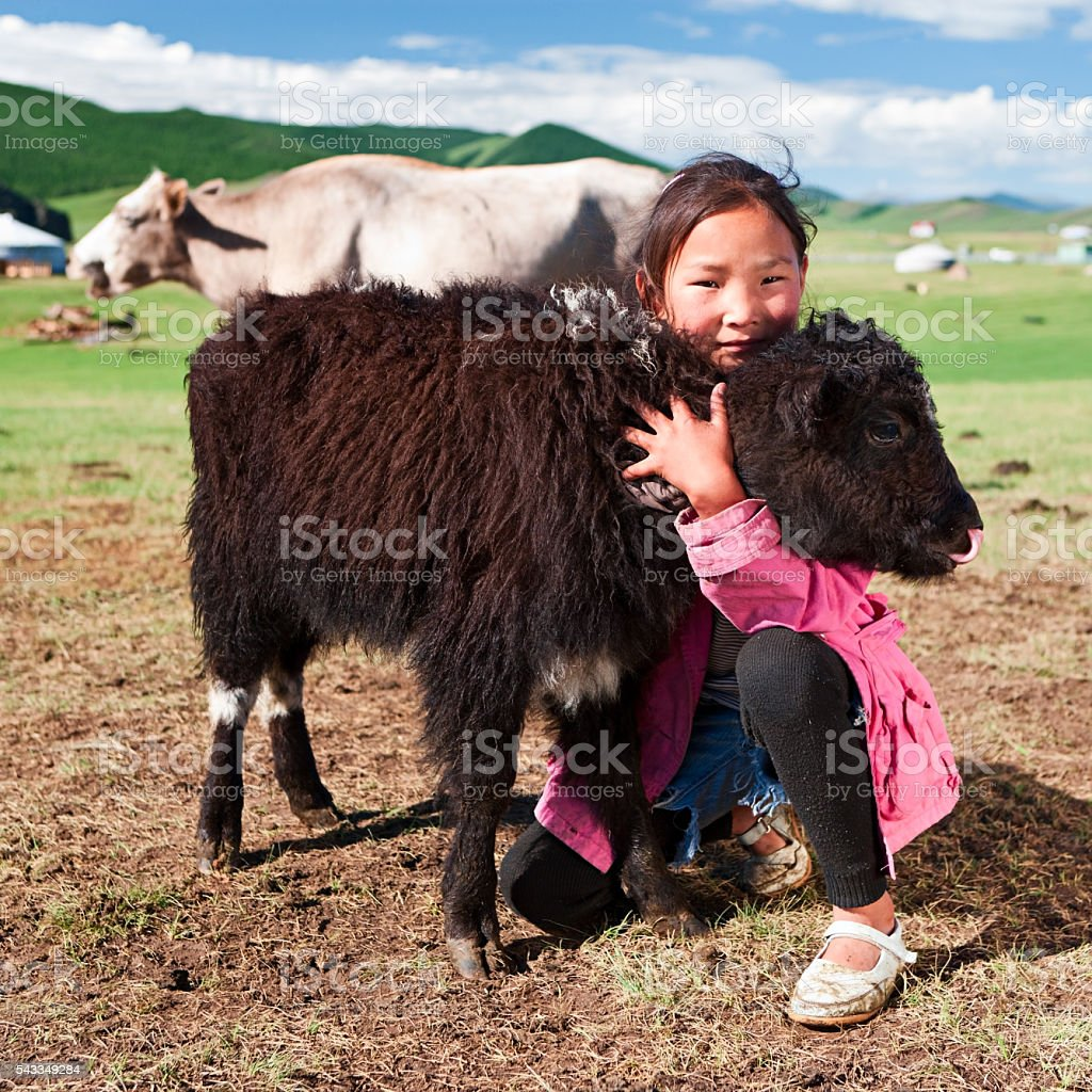 Mongolian young girl playing with yak in Central Mongolia stock photo