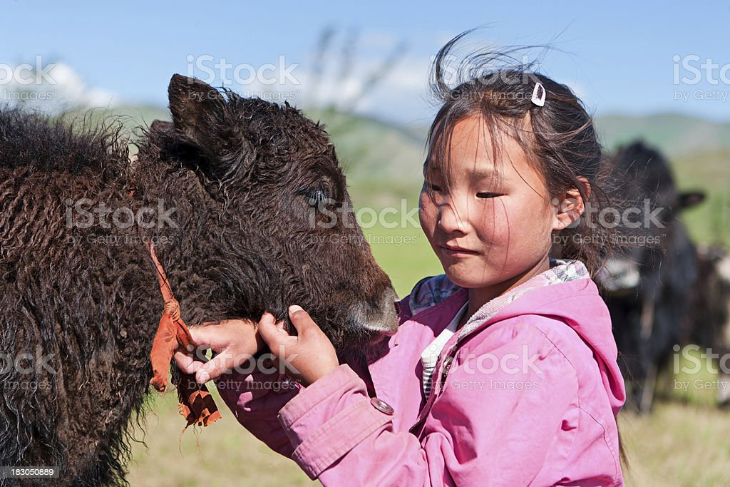 Mongolian young girl playing with yak royalty-free stock photo