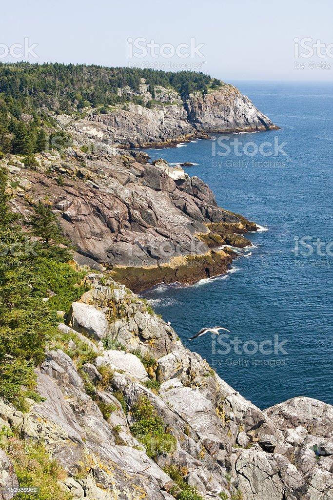 Monhegan Island Coast royalty-free stock photo
