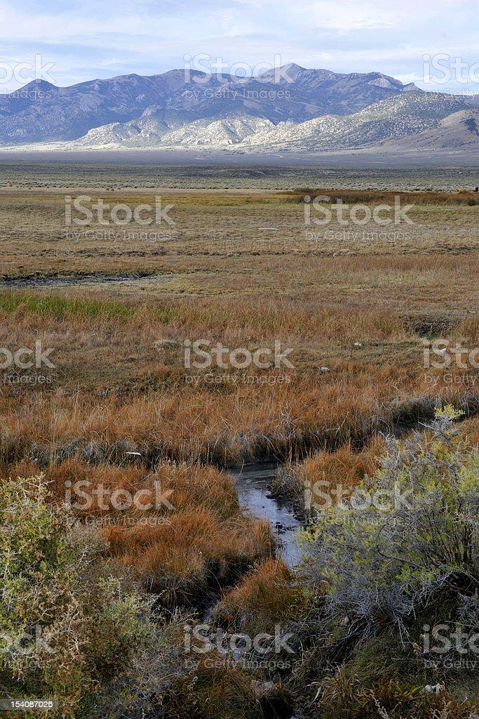 Monitor Valley, Nevada royalty-free stock photo