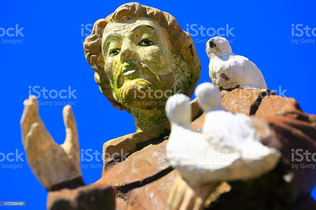 Monk friar blessing with doves in cemetery stock photo