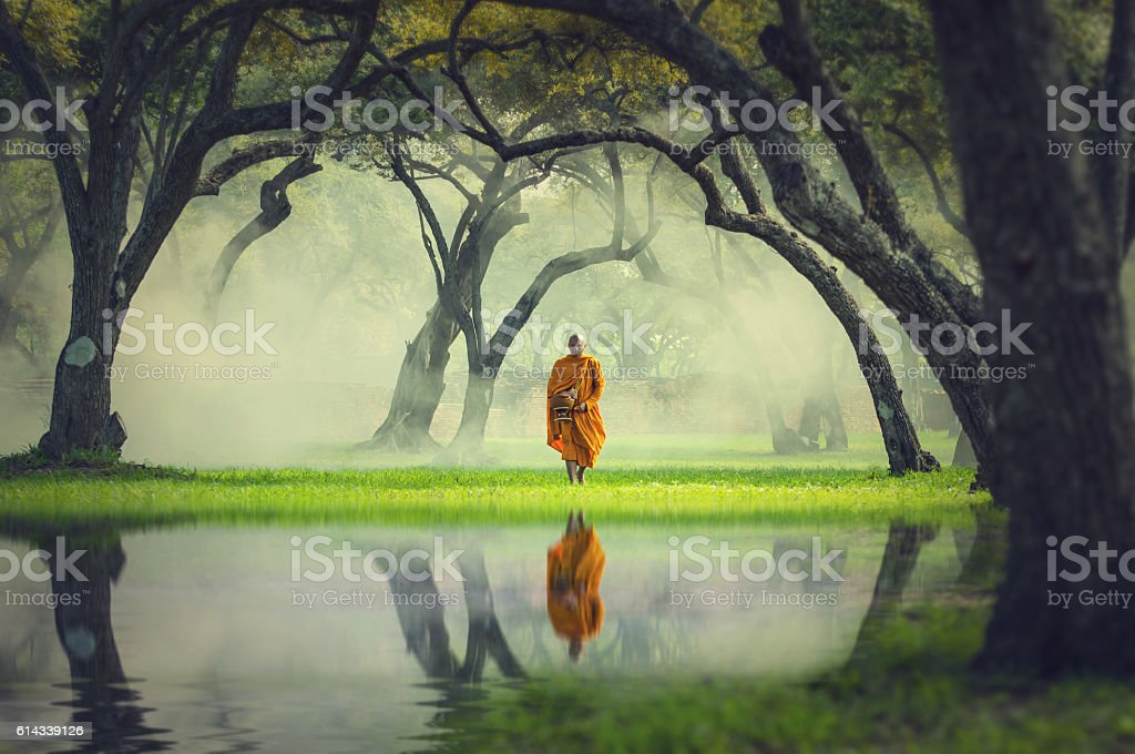 Monk hike in deep forest reflection with lake, Buddha Religion stock photo