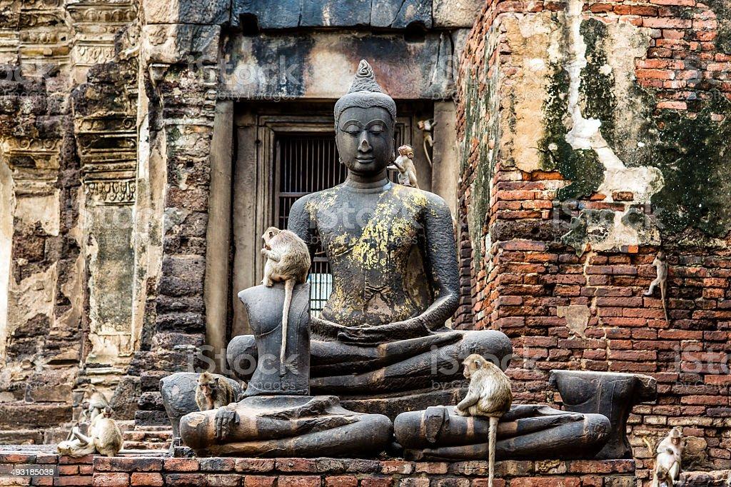 Monkey and Buddha Image. Lopburi Thailand. stock photo