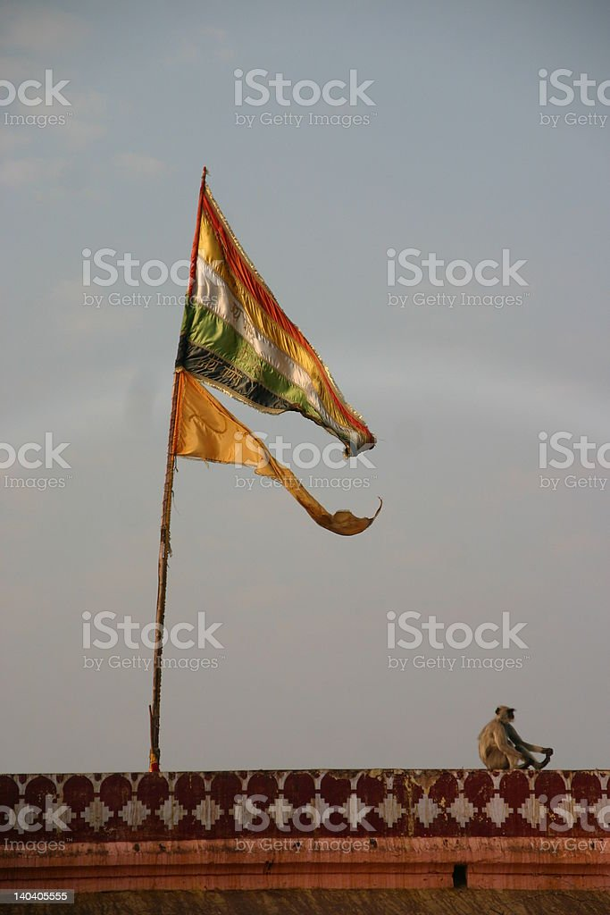 Monkey and Hindu flags on temple royalty-free stock photo