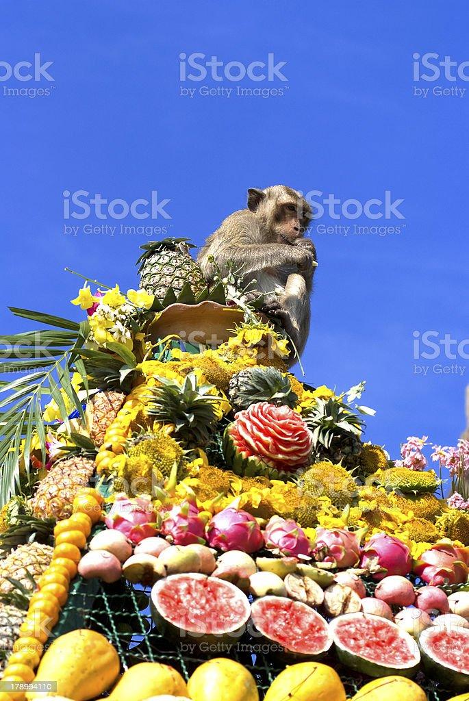 Monkey buffet festival in Thailand stock photo