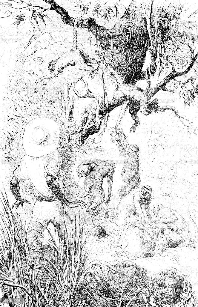 Monkey Business hand drawn illustration stock photo