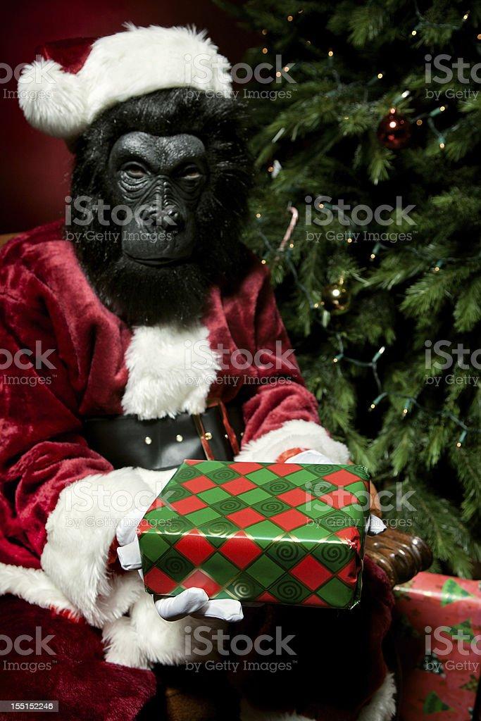 Monkey Claus at Christmas stock photo