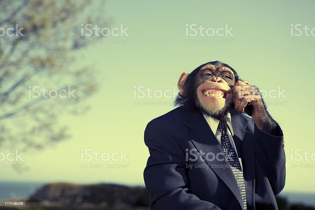 Monkey Communication stock photo