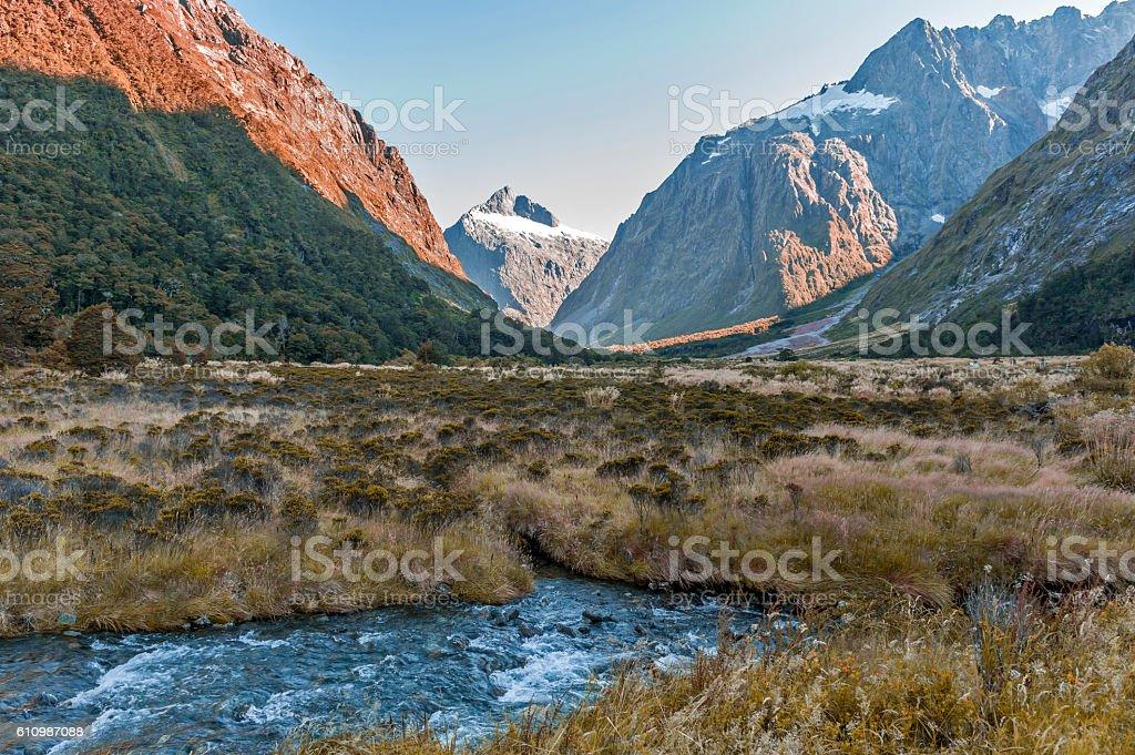 Monkey Creek on Milford Road, New Zealand stock photo