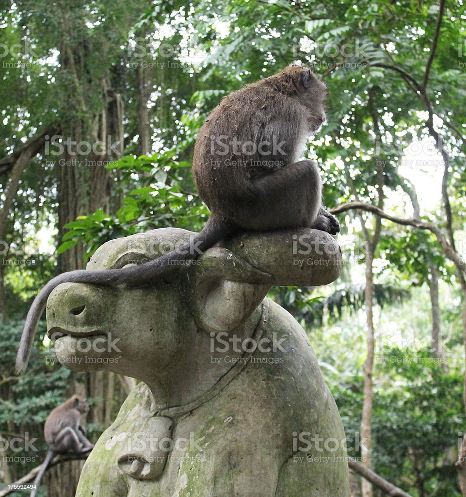 Monkey on a statue royalty-free stock photo
