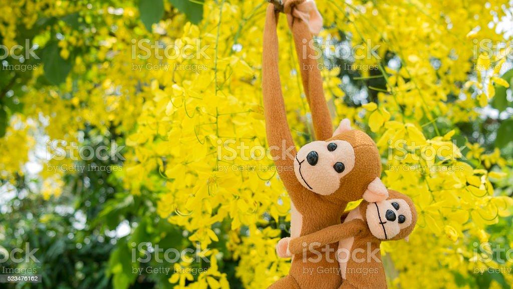 Affen, der den Baum Lizenzfreies stock-foto