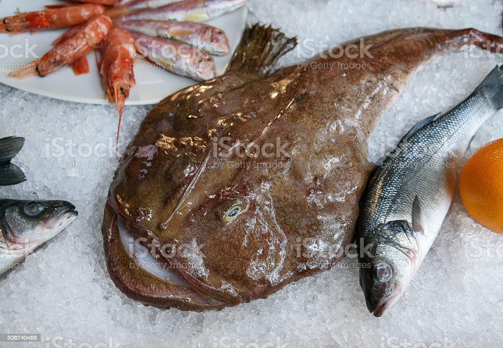 Monkfish lies on ice. Fish from Adriatic. Sea food stock photo