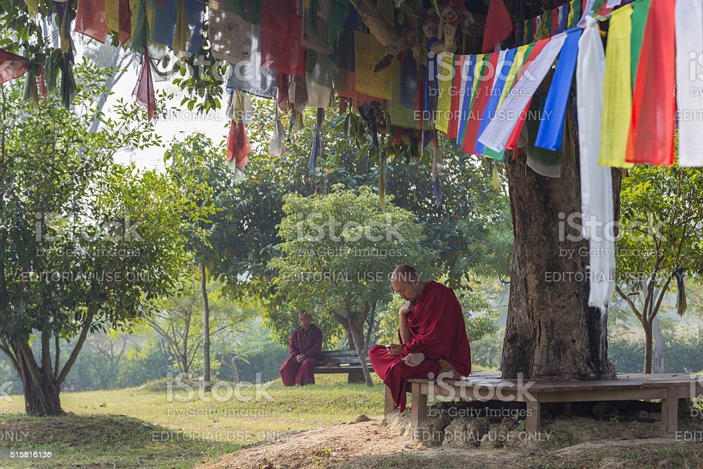 Monks sitting under a tree in Lumbini, Nepal stock photo