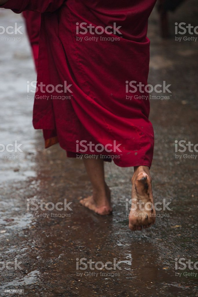 Monks  walking bare feet in rain searching for alms stock photo