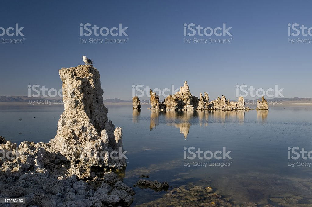 Mono Lake, California royalty-free stock photo