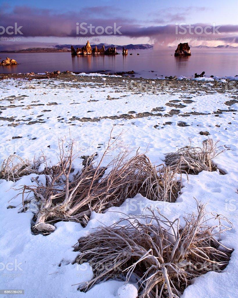 Mono Lake California stock photo