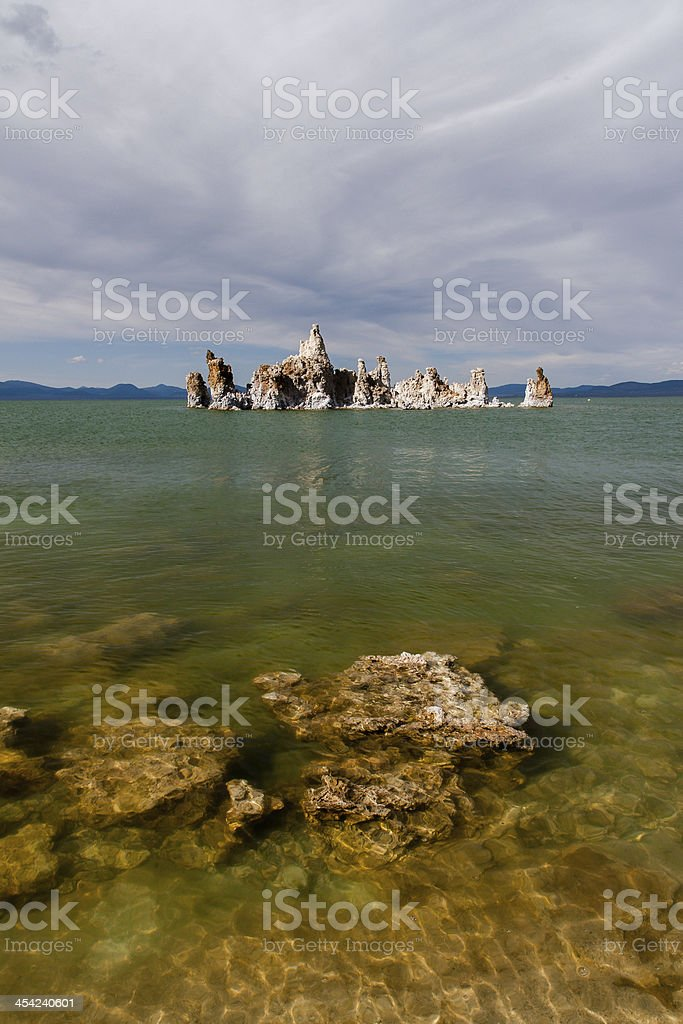 Mono Lake tufa rock in green water (vertical) royalty-free stock photo