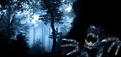 Monster in night forest