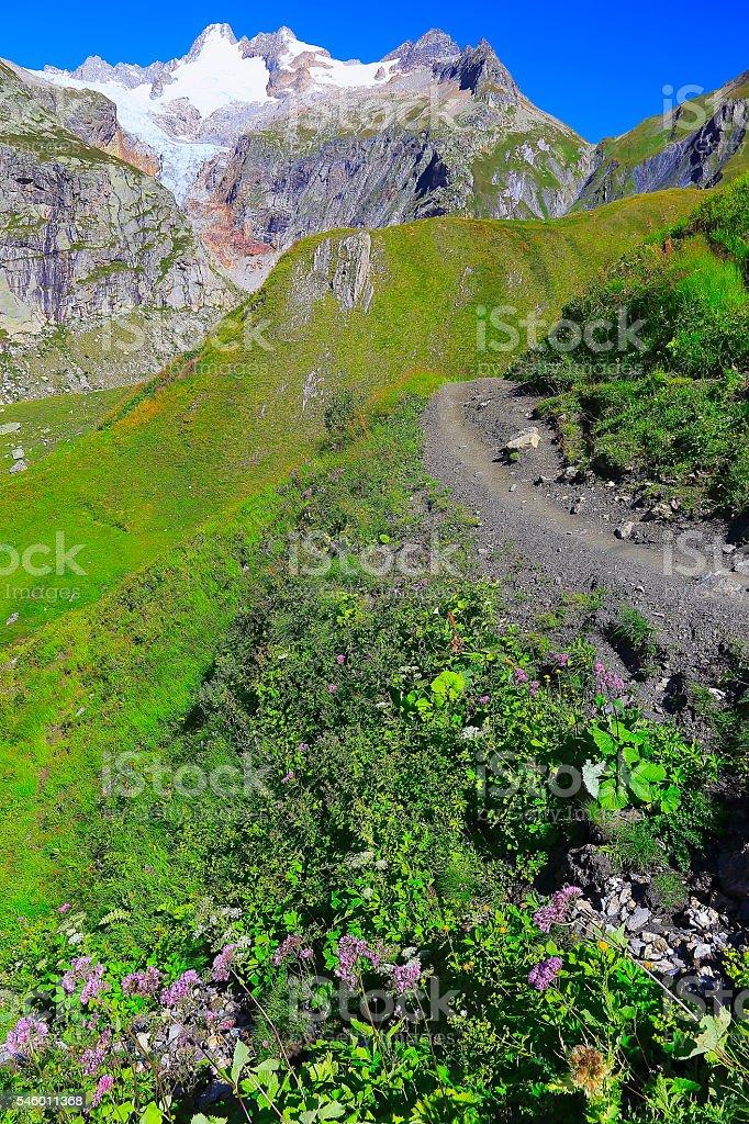 Mont Blanc idyllic alpine landscape, Grandes jorasses trail, Aosta Valley stock photo