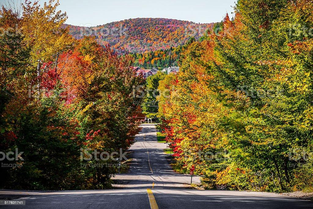 Mont Saint-Sauveur village in fall. stock photo
