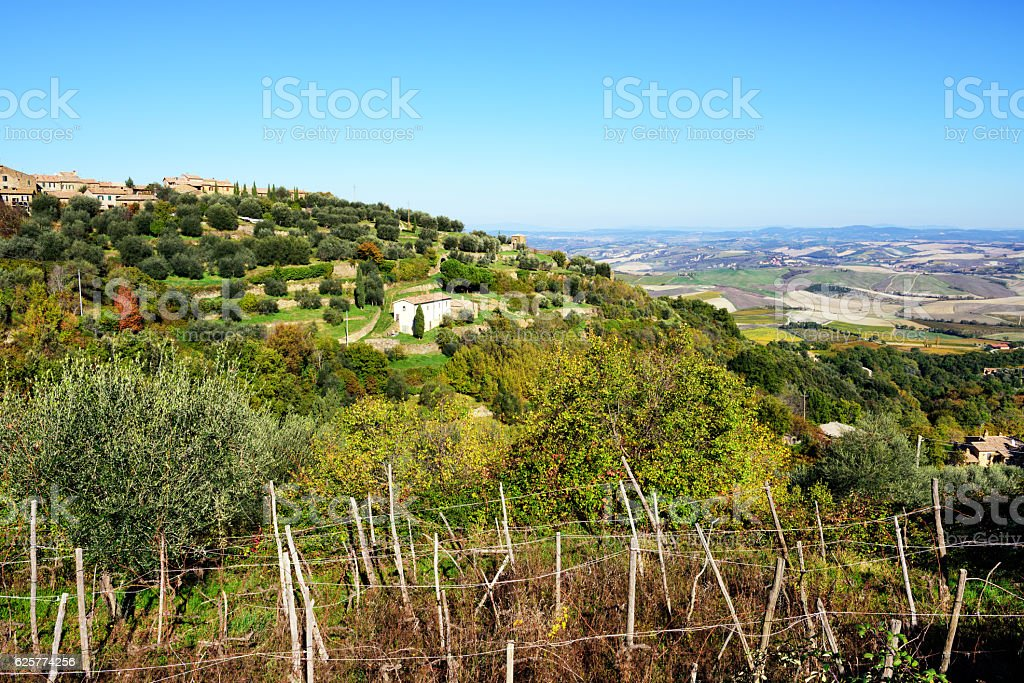 Montalcino and countryside, Tuscany, Italy stock photo