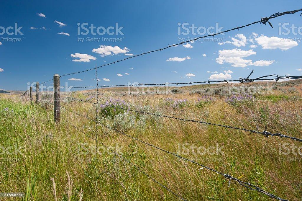 Montana Fence Line stock photo