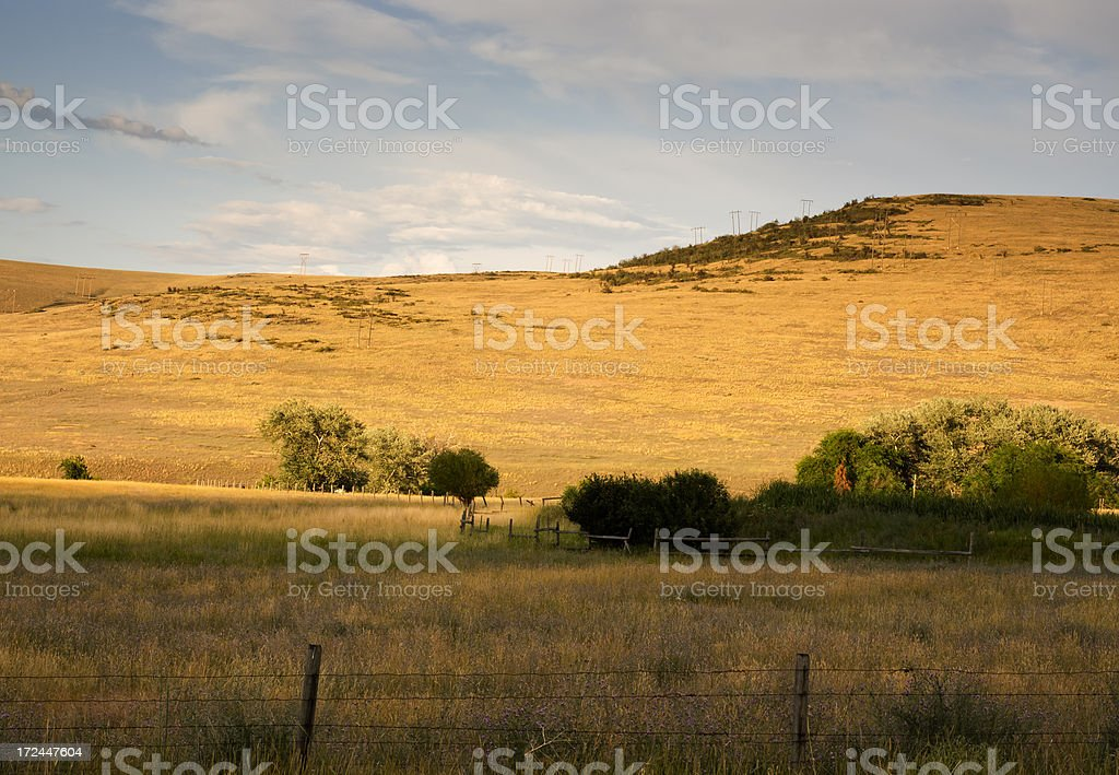 Montana Hills and Field royalty-free stock photo