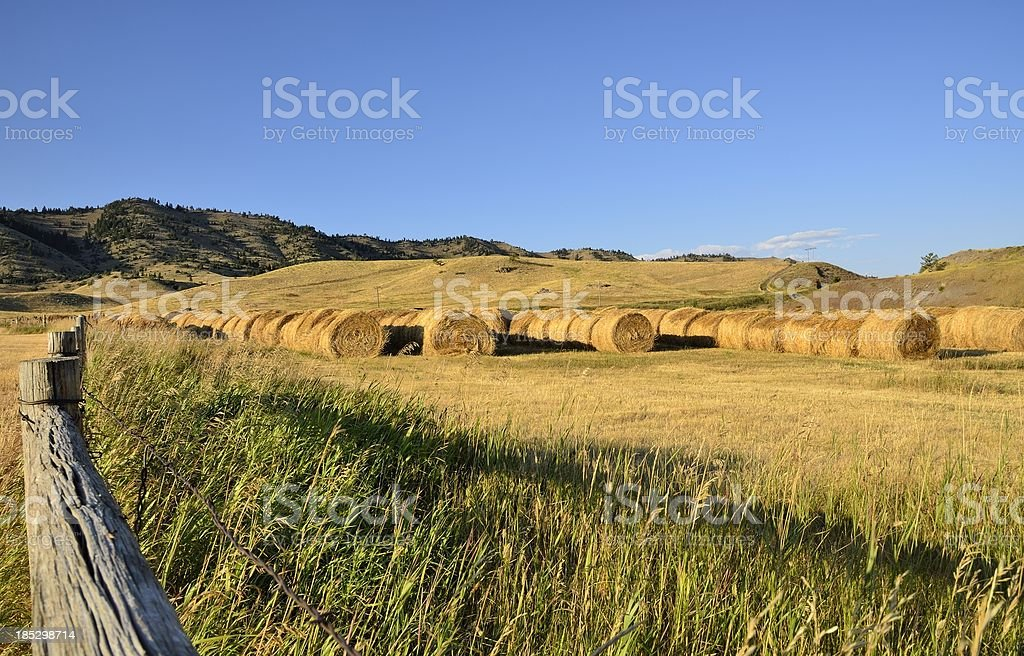 Montana Landscape royalty-free stock photo