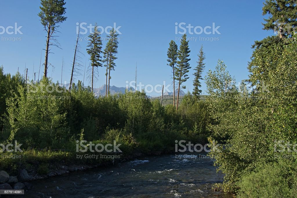 Montana's Bowman Creek stock photo