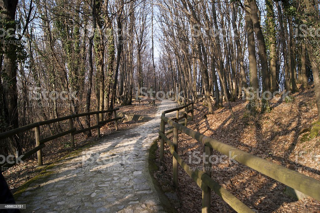 Monte isola trail in early spring stock photo