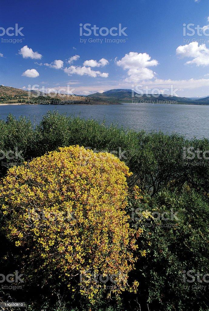 Monte Pranu lake royalty-free stock photo