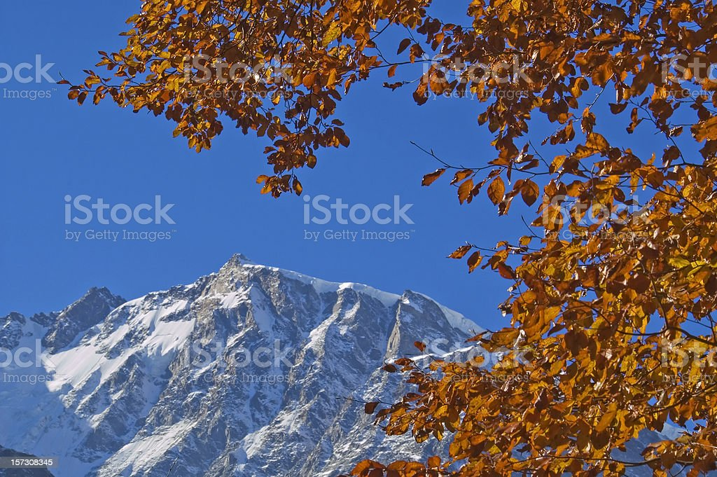 Monte Rosa in Autumn, leaves frame stock photo