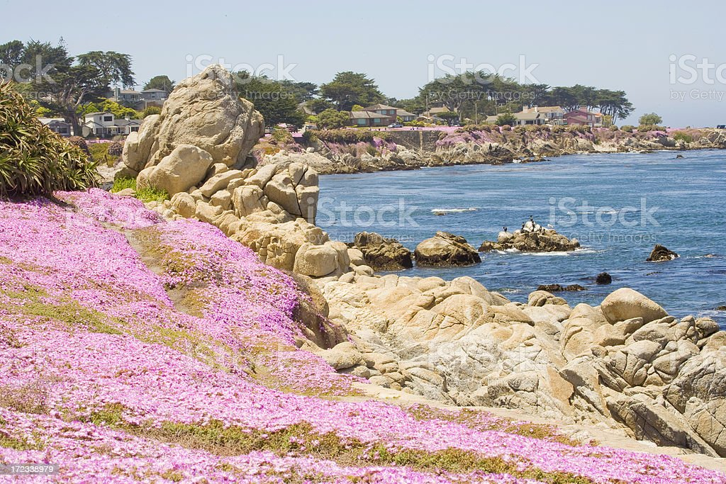 Monterey Bay: Seascape at Pacific Grove stock photo