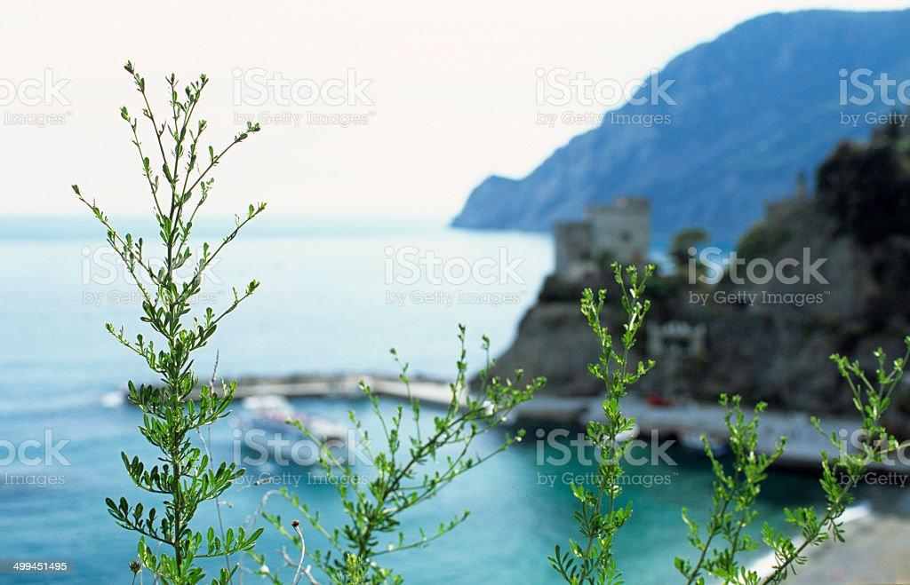 Monterosso's port - Harbour and coastline, Ligury royalty-free stock photo