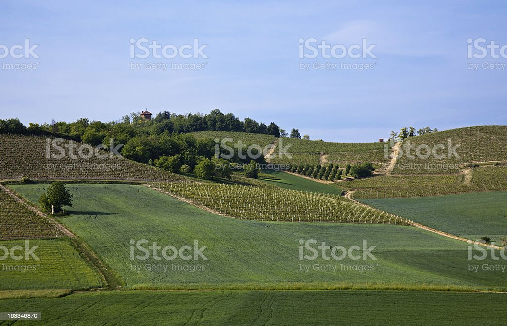 Monferrato royalty-free stock photo