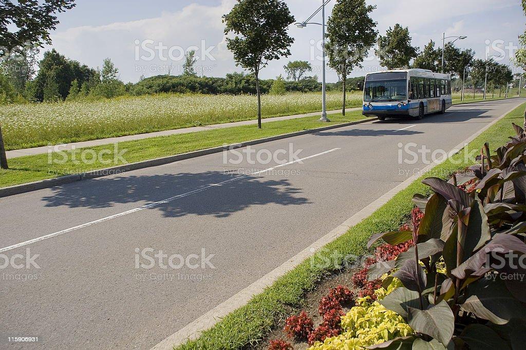 Montreal City Bus, Summer stock photo
