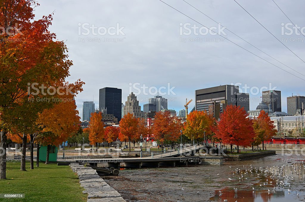 Montreal Skyline in Indian Summer stock photo