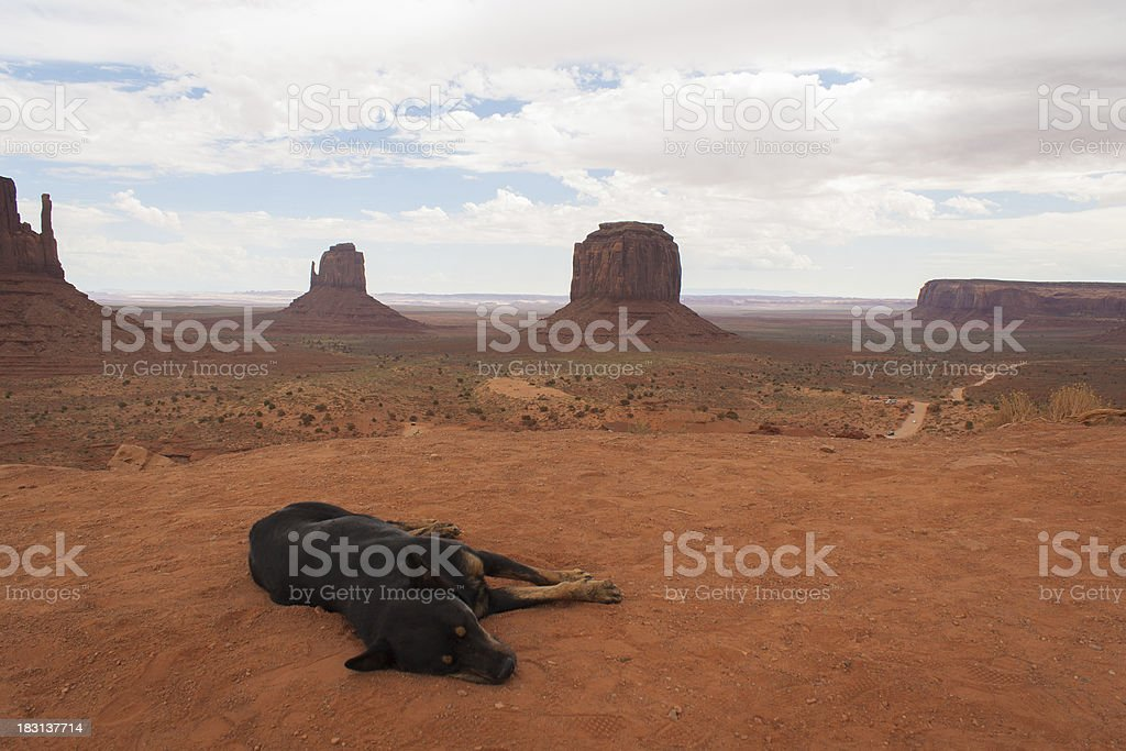 Monument Valley and a lazy dog royalty-free stock photo