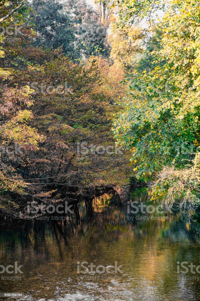Monza (Italy):  Lambro river in the park stock photo