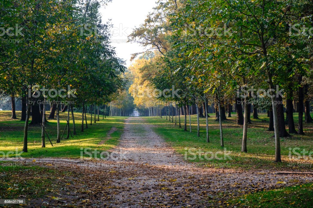 Monza (Italy):  the park at fall stock photo