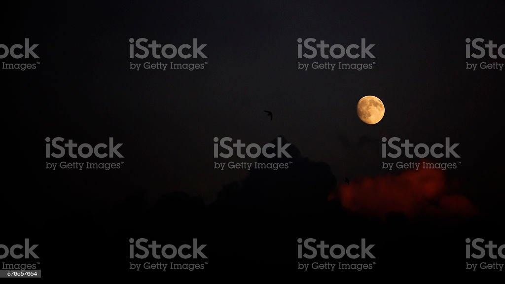 Moody evening sky with full moon, clouds and swallows stock photo