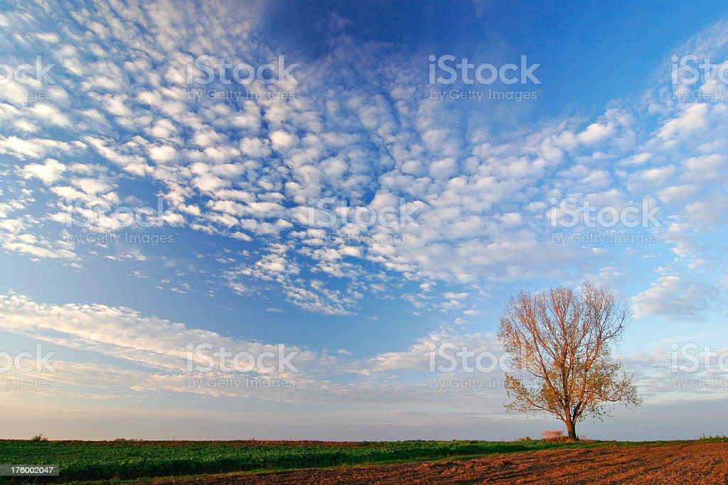 Moody Sky royalty-free stock photo