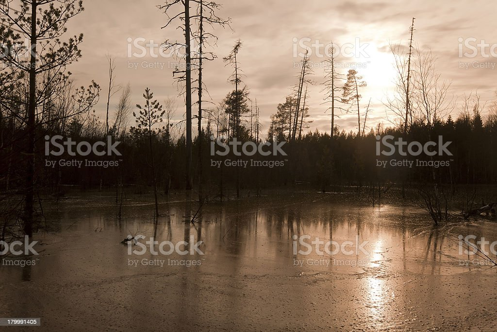 Moody sundawn over a frozen beaver damming stock photo